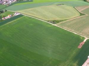 agriculture-CIEL